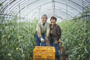 野菜を運ぶ農家の夫婦